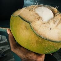 Coconut tasting