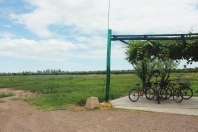 Biking through the wineries