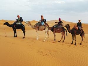 The Sahara Desert crew