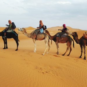 The Sahara Desert crew