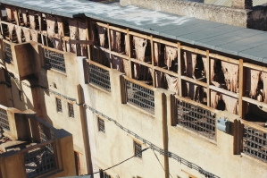 Fes Leathery Tannery